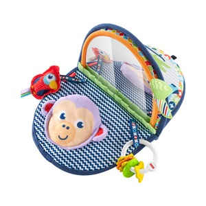 Baby Spielzeug Fisher Price Badespaß-spiegel